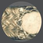 Ucpávkové šňůry MS650